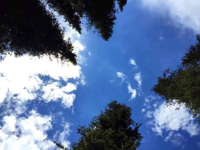 背景 壁纸 风景 天空 桌面 680_510