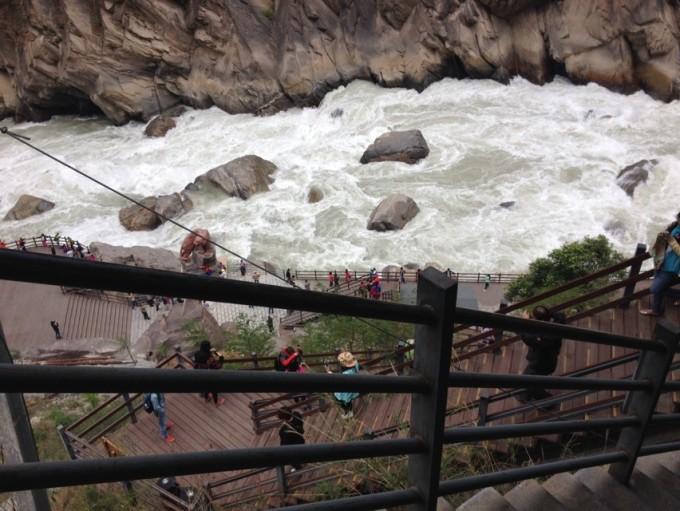 北京动物园虎像